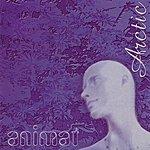 Animat Arctic (Ep)