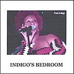 Indigo Indigo's Bedroom