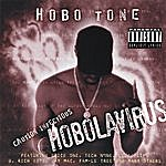 Hobo Tone Hobolavirus