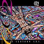 Co2 21 St Century Sos