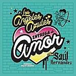 Los Ángeles Azules Entrega De Amor