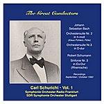 Carl Schuricht The Great Conductors: Carl Schuricht, Vol. 1 (1960)