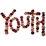 Citizen Youth