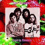 The Strawbs Alive In America