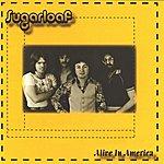 Sugarloaf Alive In America