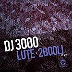 DJ 3000 Lutë