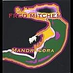 Fred Mitchem Mandragora