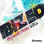 David Penn Ibized (2012)