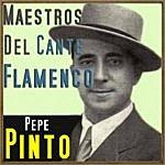 Pepe Pinto Maestros Del Cante Flamenco