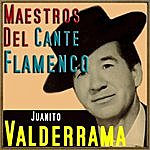 Juanito Valderrama Maestros Del Cante Flamenco