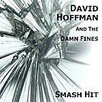 David Hoffman Smash Hit