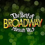 Broadway Cast The Best Of Broadway Musicals Vol. 5