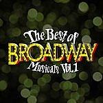 Broadway Cast The Best Of Broadway Musicals Vol. 1