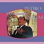Pedro Vargas Enamorado