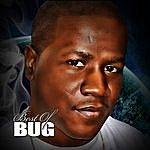 Bug Best Of Bug