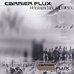 Carrier Flux Introspective Nightmare