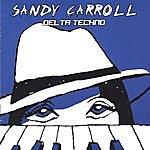 Sandy Carroll Delta Techno
