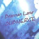 Brannan Lane Submerge