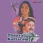 Johnson Thooval Kottaram (Original Motion Picture Soundtrack)