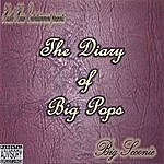 Big Scoonie The Diary Of Big Pops