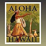 Murdo McRae Aloha Hawaii - Hawaiian Guitar
