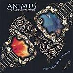 Animus Mediterranean Dreams