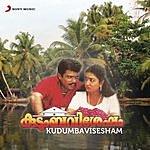 Johnson Kudumbavisesham (Original Motion Picture Soundtrack)