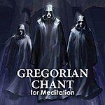 Nova Schola Gregoriana Peaceful Gregorian Chant For Meditation