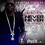 Aidonia Never Never - Raw Cut Riddim - Single