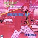 Nathan Seth Burning Up - Cd Single