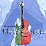 Seecret Level Electricoustic