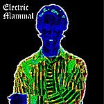 Bob Hinrichs Electric Mammal