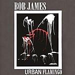 Bob James Urban Flamingo