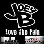 Joey B Love The Pain
