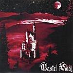 The State Castel Voiaj
