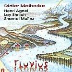 Didier Malherbe Fluvius