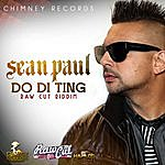 Sean Paul Do Di Ting (Single)