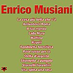 Enrico Musiani Enrico Musiani