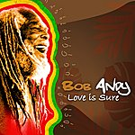 Bob Andy Love Is Sure - Single