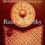 Bill Mallonee & Vigilantes Of Love Roof Of The Sky