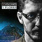 Walter Flores De Volcanes Y Flores