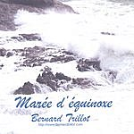Bernard Trillot Marée D'équinoxe