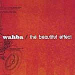 Wahba The Beautiful Effect