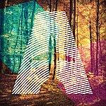 Vashti Bunyan Rose Hip November (Luca Guerrieri Remix)