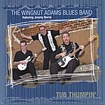The Wingnut Adams Blues Band Tub Thumpin'