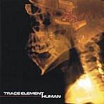Trace Element Human