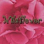 Traysee Wildflower