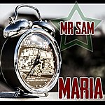 Mr. Sam Maria
