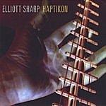 Elliott Sharp Haptikon