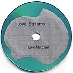 Jaye Mitchell Love Streams